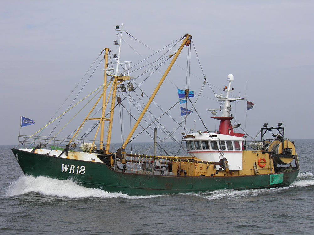 For sale, steel shrimptrawler WR18 In Solidum