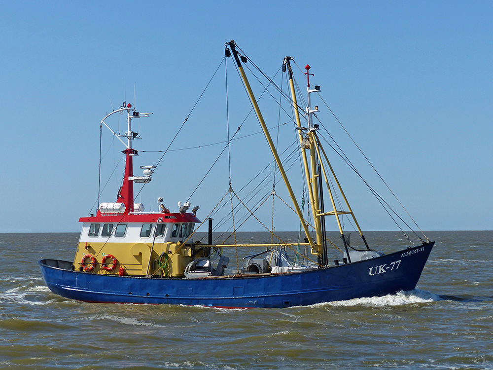 For Sale, Steel shrimptrawler UK-77