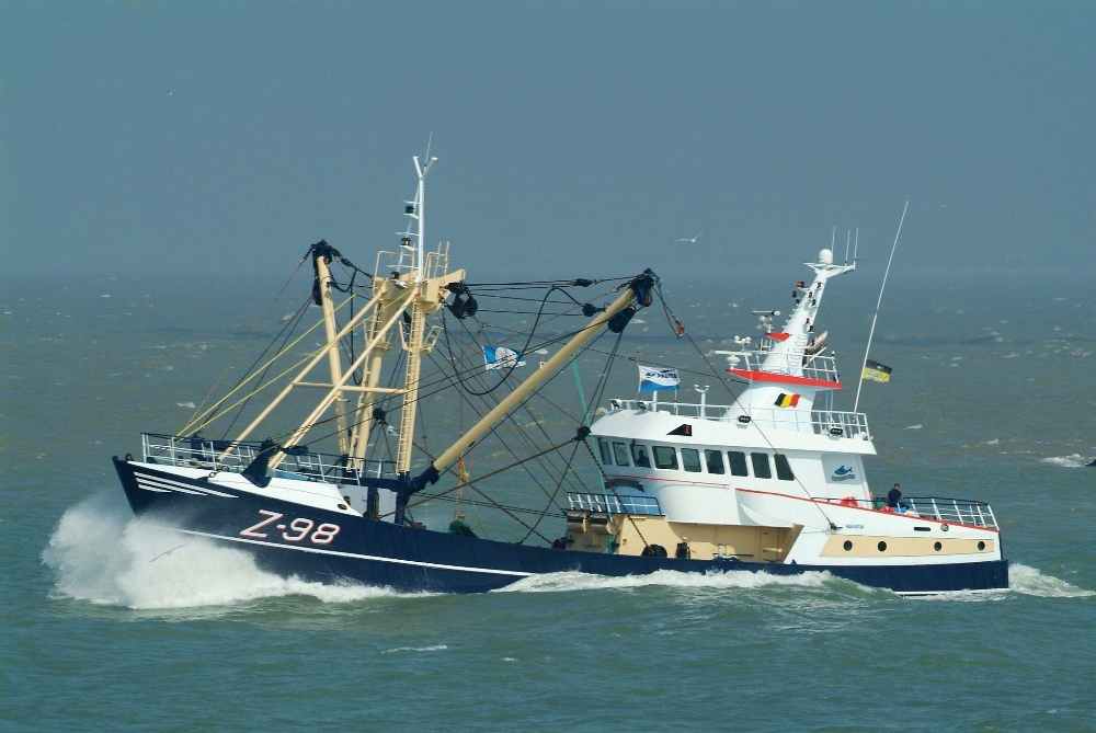 For sale: Z-98 Steel Beamtrawler
