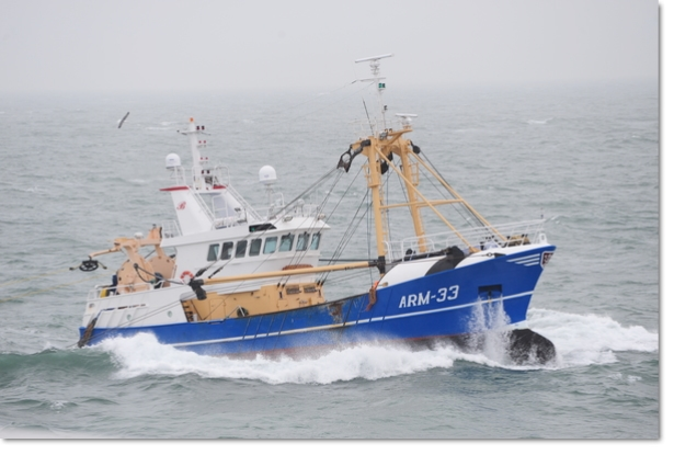 ARM-33 Tempus Fugit sold to Scheveningen